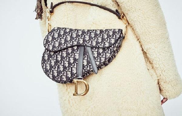 Dior Saddle Bag mang đến sự mới mẻ trong phong cách của bạn